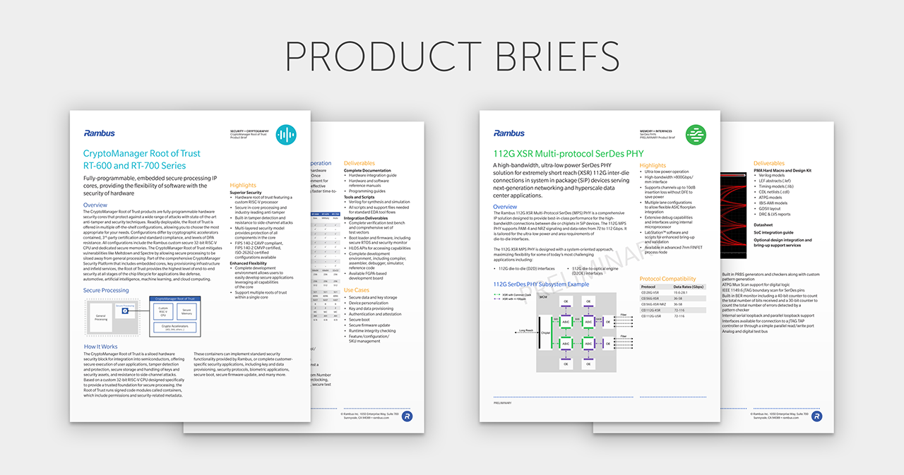 Rambus - Example Product Briefs