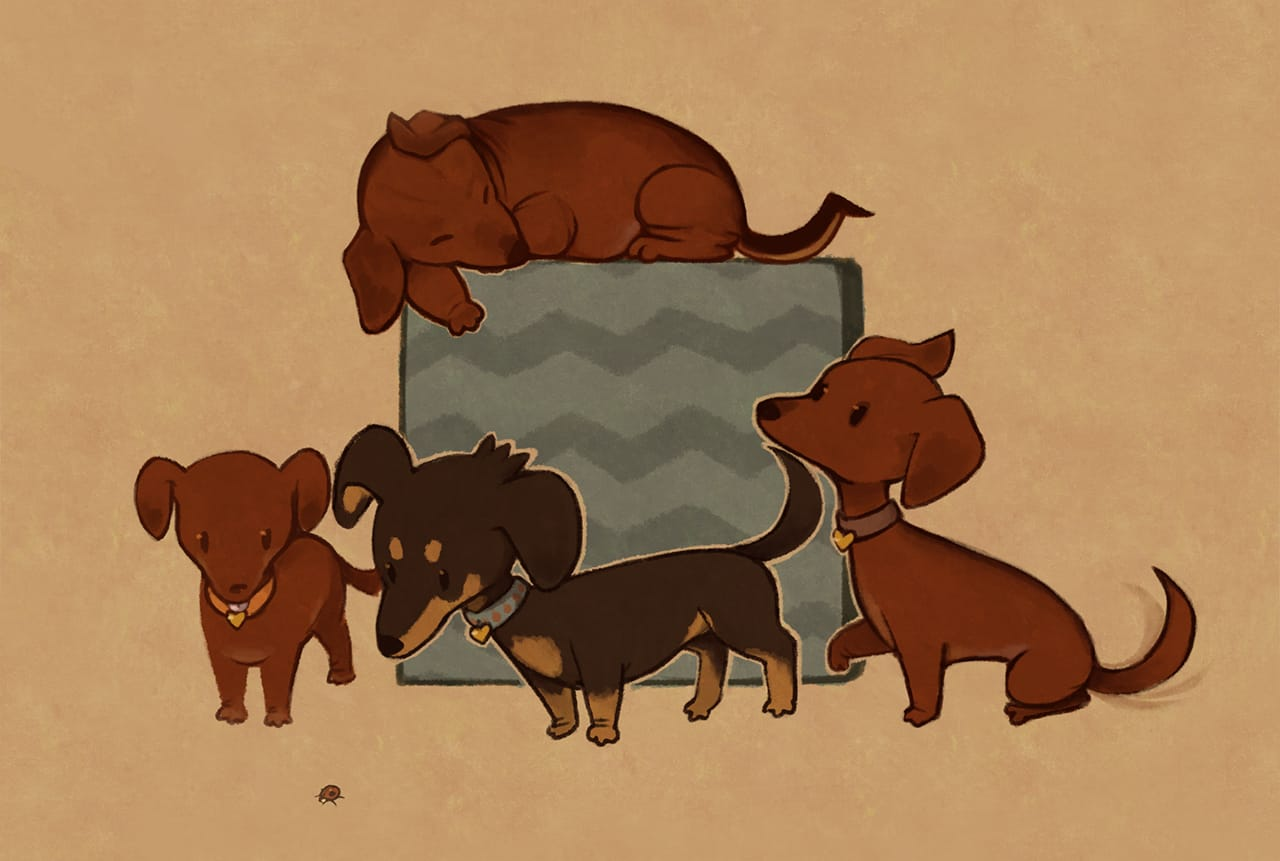 Four miniature dachshunds and a large gift box.
