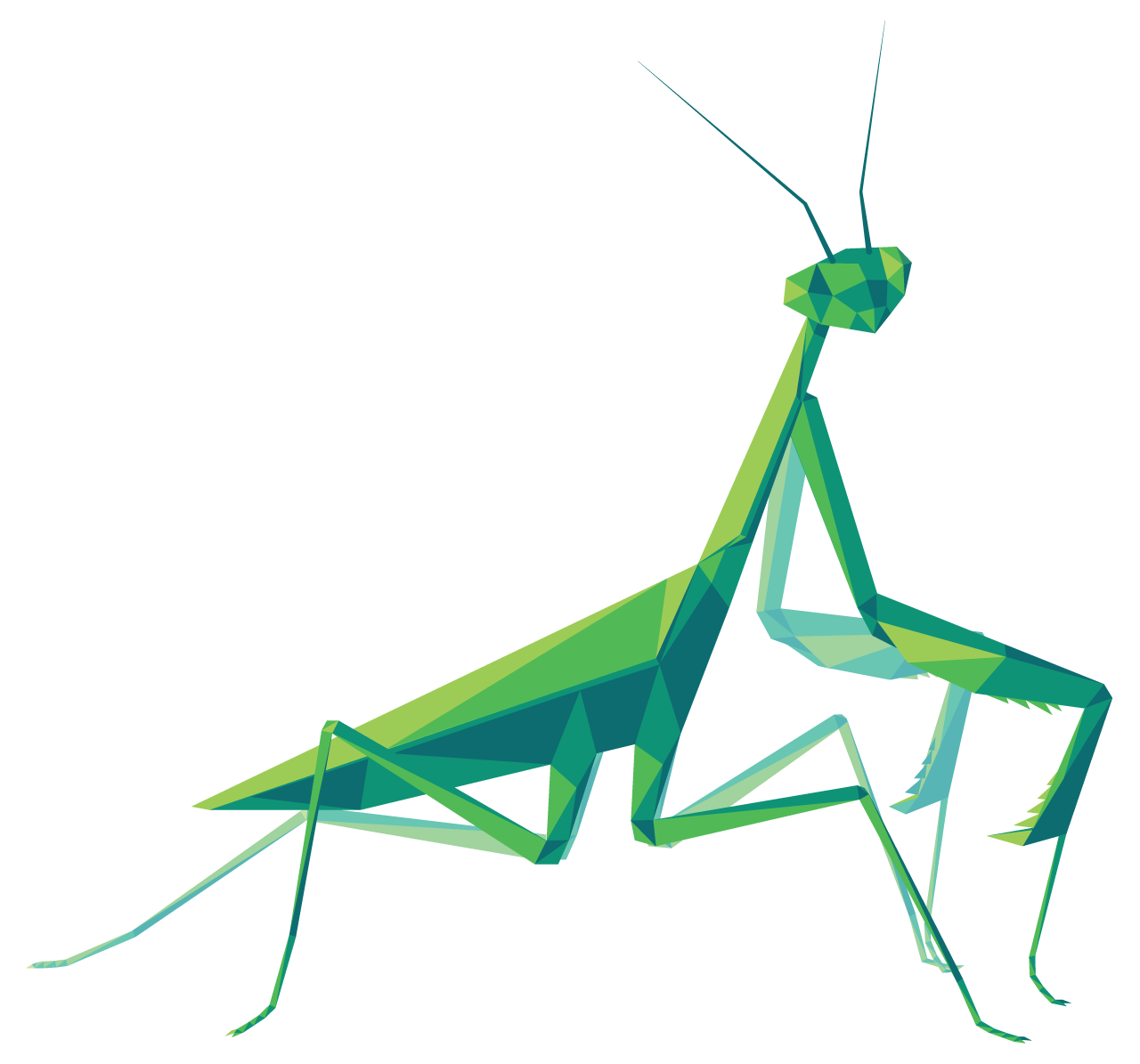 A mantis with clearly visible polygonal faces.