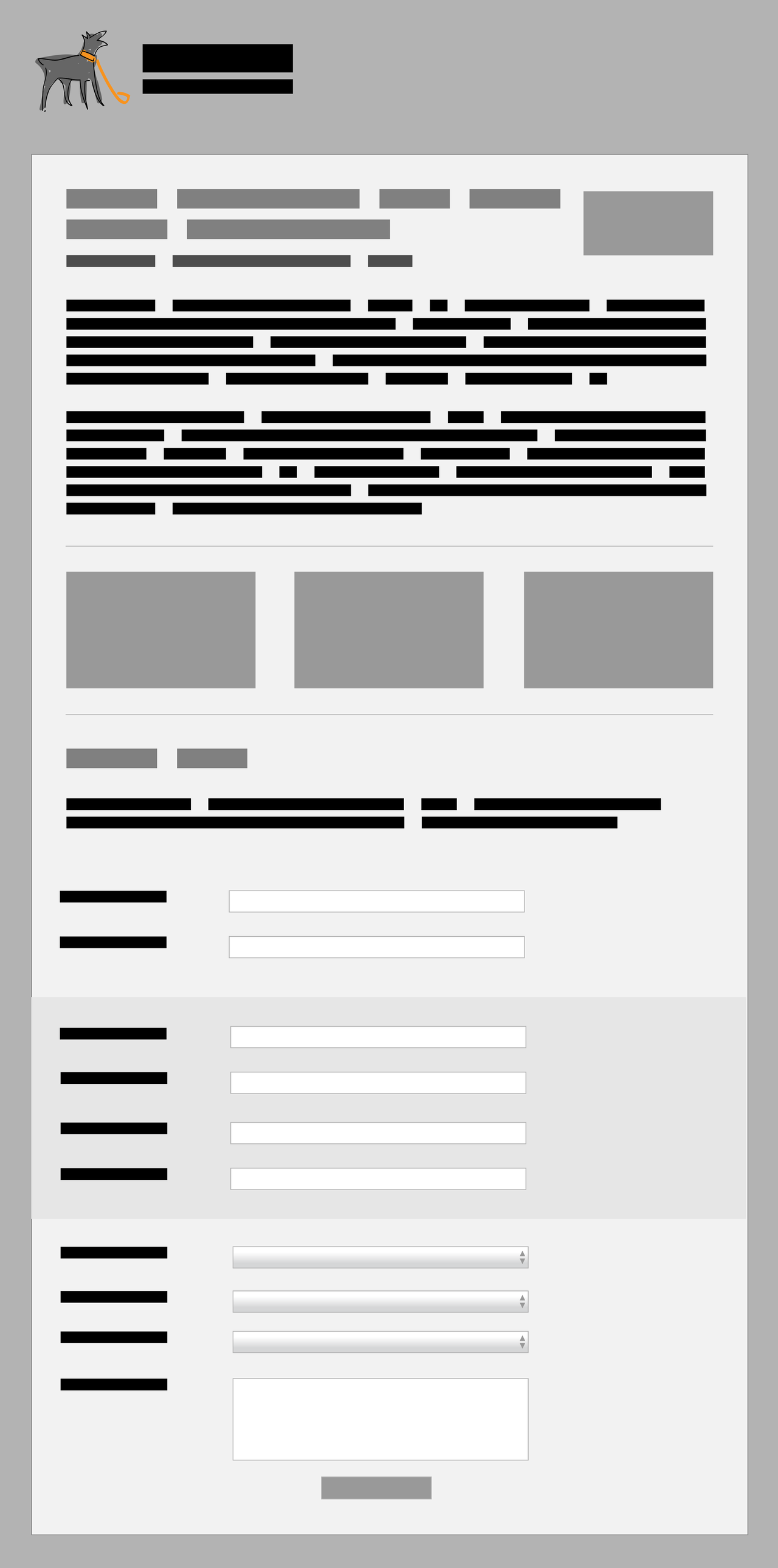 Landing Template Wireframe
