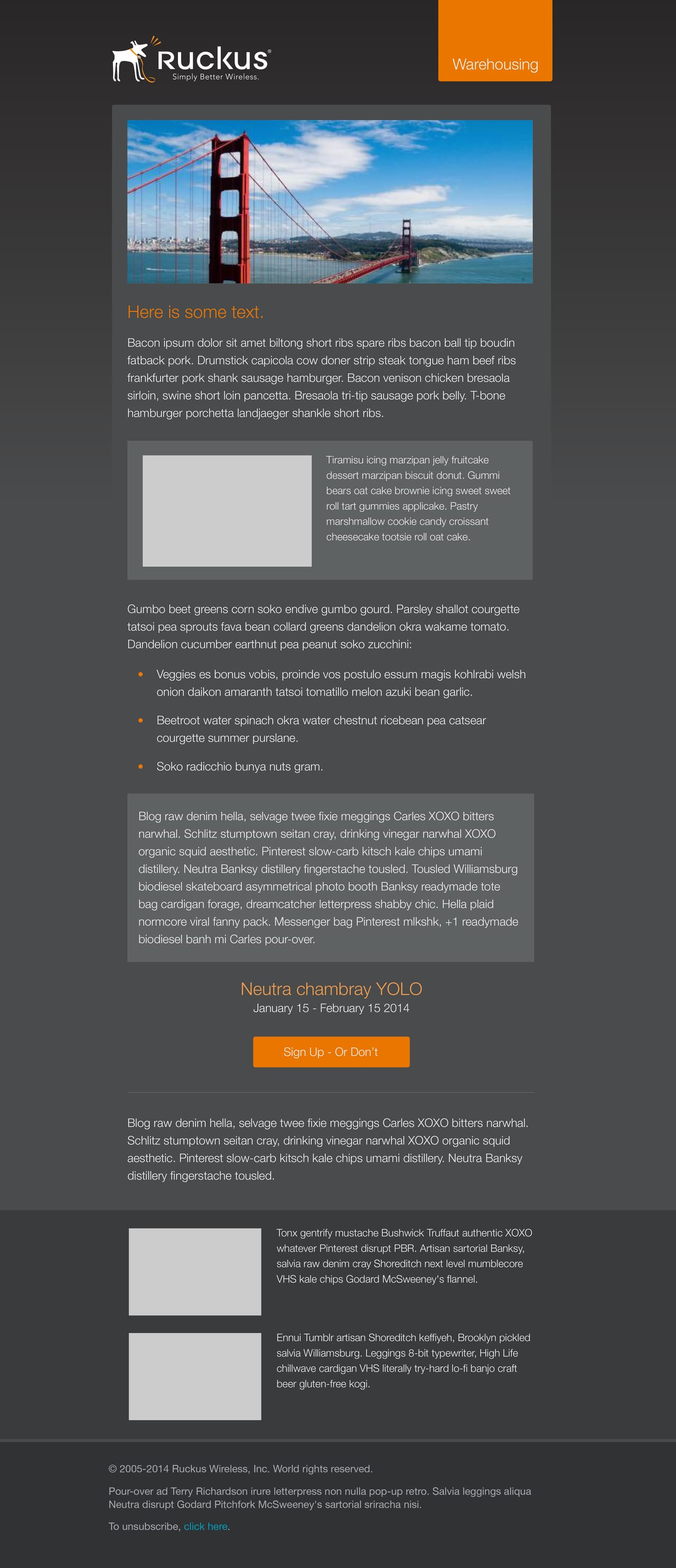 Ruckus Wireless - Email Templates - Heather Romero
